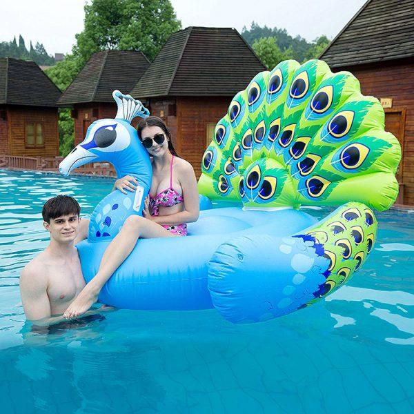 peacock float pool