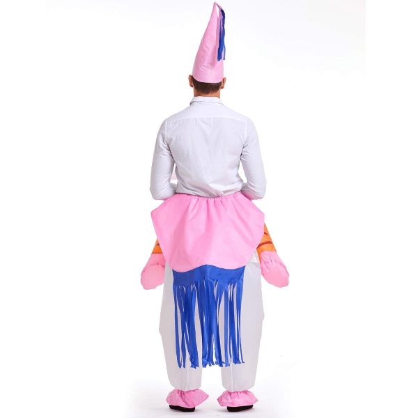 Unicorn Rider Costume